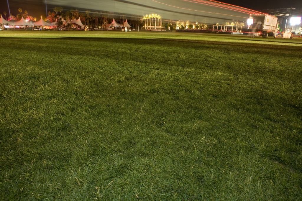 Thursday Night Grass at Coachella